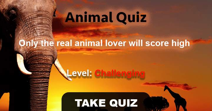 10 very hard questions about animals only a zoologist can answer